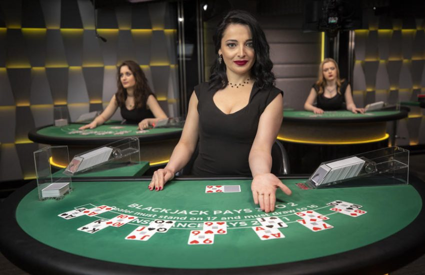 Methods Create Better Gambling Tips With The Assistance Of Your Canine